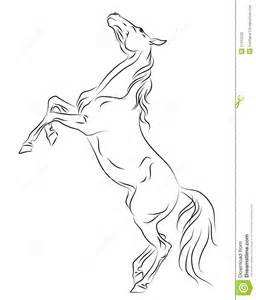 horse rearing up sketch stock photography image 27412532