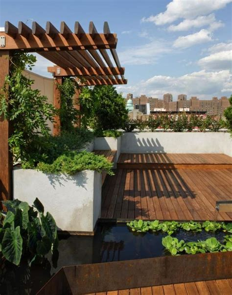 roof deck garden roof garden pond deck
