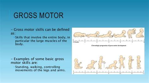 gross motor gross motor skills can be defined as skills