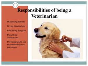 Responsibilities For A Veterinarian by Megan Quot Being A Veterinarian Quot