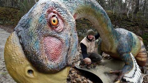 kinderzimmer konzert bremen 4 dino park zeigt einblicke ins kinderzimmer t rex welt