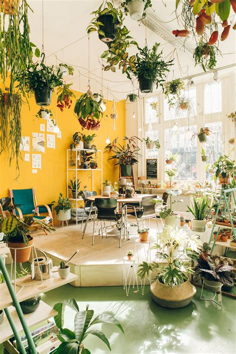 best plant store in amsterdam plant shopping at wildernis in amsterdam haarkon lifestyle and travel