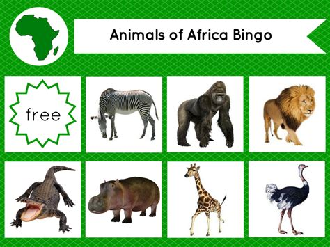 montessori printables animals montessori inspired animals of the continents bingo