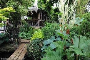man creates exotic paradise garden with banana plants and