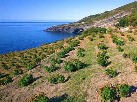 di pantelleria sicily pantelleria 10 things to do visit sicily