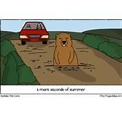 APOKALIPS  Groundhog Day