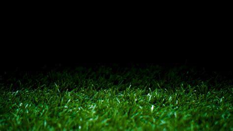 green grass display background photo photoatbstrakt