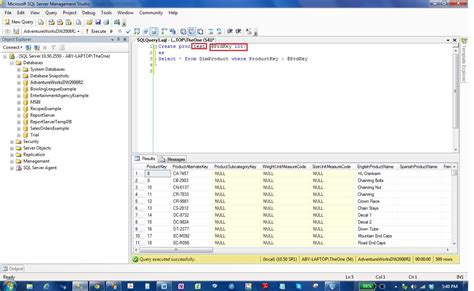 sql parameterized query tutorial input output and return values in ssis execute sql task