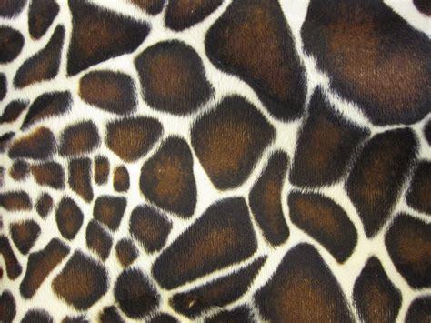 giraffe pattern image giraffe pattern wallpaper 1600x1200 58514