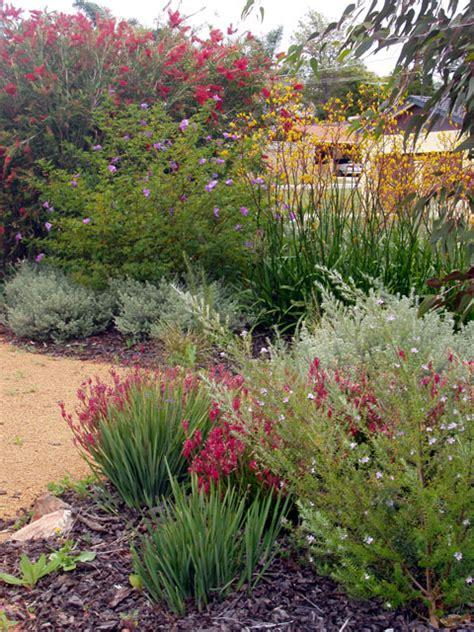 cottage gardens in australia australian garden on australian garden