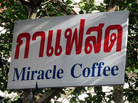 Miracle Coffee miracle coffee by fay chiang mai