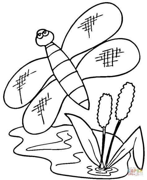 cattails coloring pages cattails coloring page www imgkid com the image kid