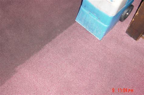 teppich und polsterreinigung teppich clean 17522020171101 blomap