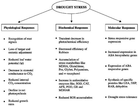 drought resistance definition comparison between the water and salt stress effects on plant growth and development intechopen