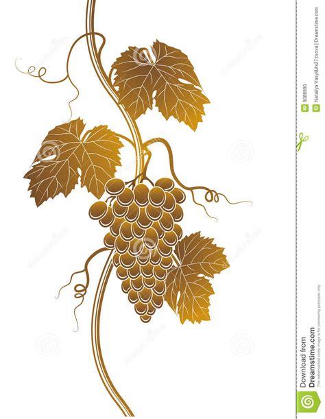 imagenes de uvas y trigo silhueta das uvas foto de stock imagem 9088990