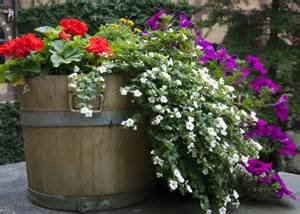 North: Whiskey Barrel Planting Tips   Garden Club