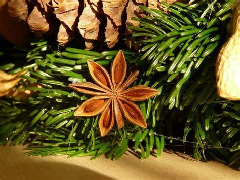 Weihnachtsdeko Aus Dem Garten weihnachtsdeko aus dem eigenen garten gabiona gabionen