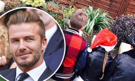 by frances kindon for mailonline david beckham flower david beckham shares pays tribute to the football star s