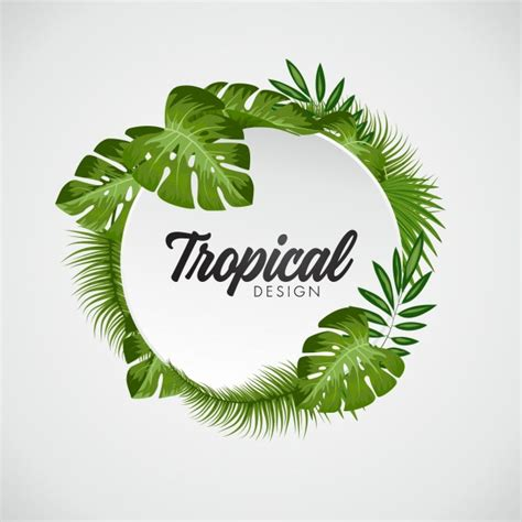 imagenes de hojas otoñales palmera fotos y vectores gratis