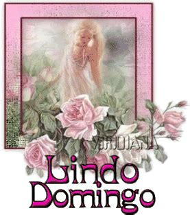 imagenes de rosas feliz domingo im 225 genes con deseos de feliz domingo