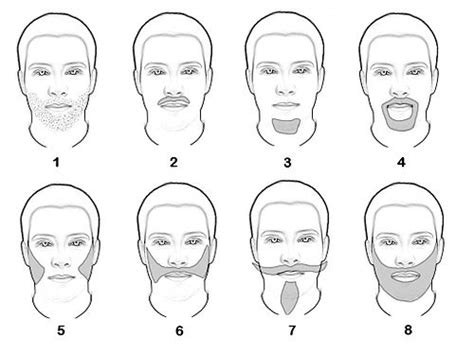 different type pubic facial hair wikipedia