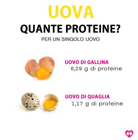 alimenti contengono uova i 6 alimenti ad alto contenuto di proteine