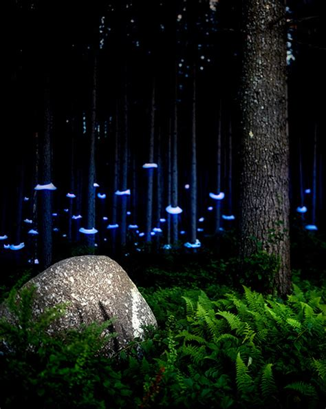 landscape light sculptures colossal