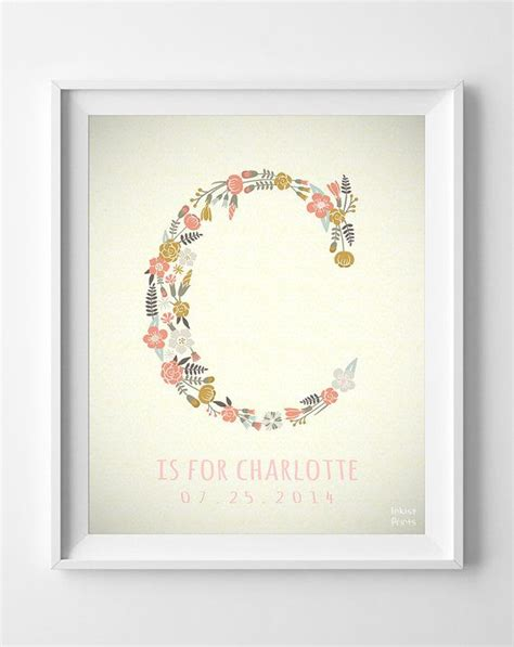 decor meaning best 25 charlotte baby ideas on pinterest girl first