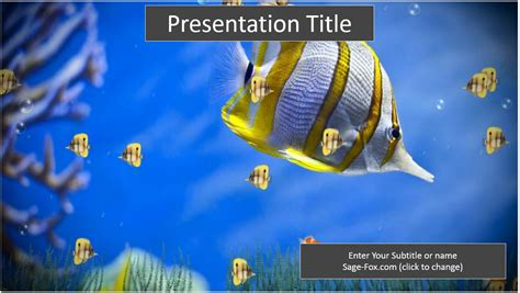 Free Colorful Fish Powerpoint Template 6248 Sagefox Fish Ppt Templates Free