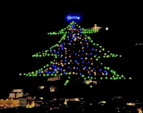 gubbio christmas tree let s cook in umbria