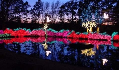 1000 images about tis the season in oklahoma on