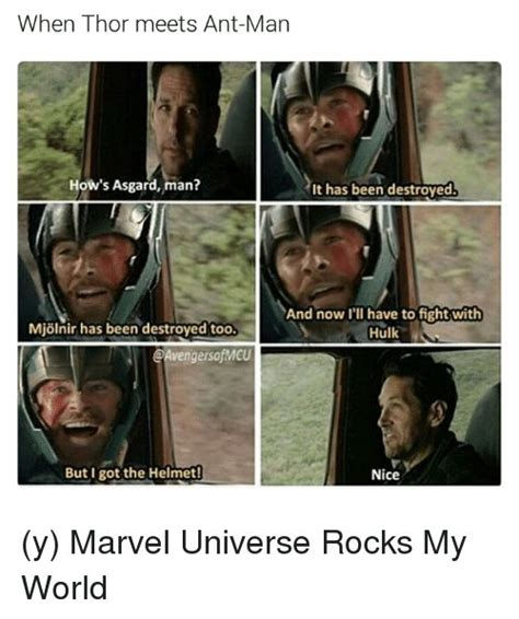 Funny Marvel Memes - 473 best thor chris hemsworth images on pinterest thor