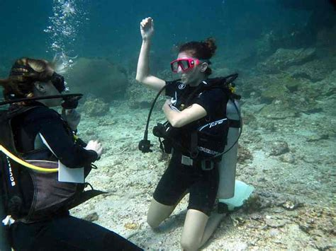 Freediving Open Water Course open water diver course big centre