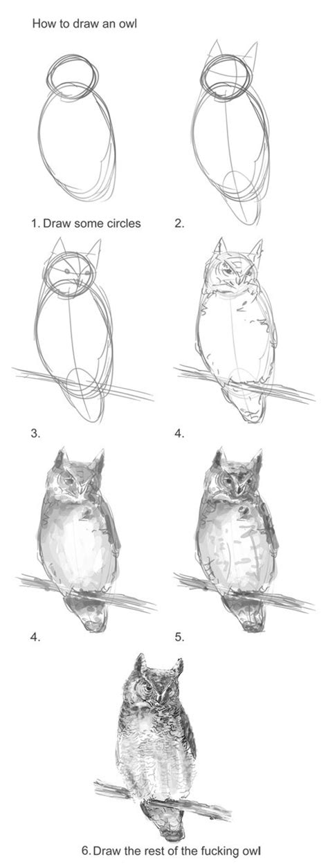 how to draw doodle owl best 25 draw an owl ideas on how to do