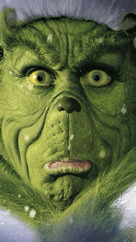 Mr Grinch Stole - 17 best images about you re a one mr grinch on