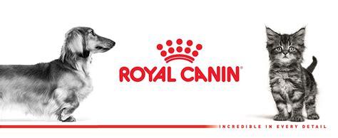 Royal Canin Mini Adlt 4kg alimento para perros royal canin mini 14lb 6 4kg