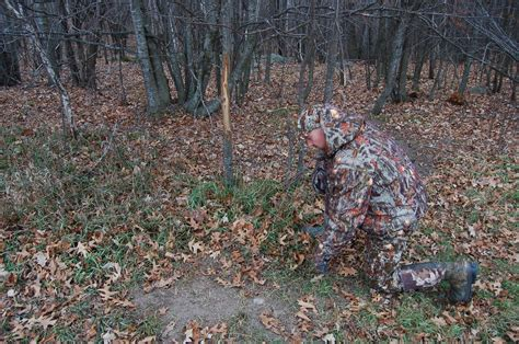 how to find deer bedding areas how to find deer bedding areas 28 images sign in the