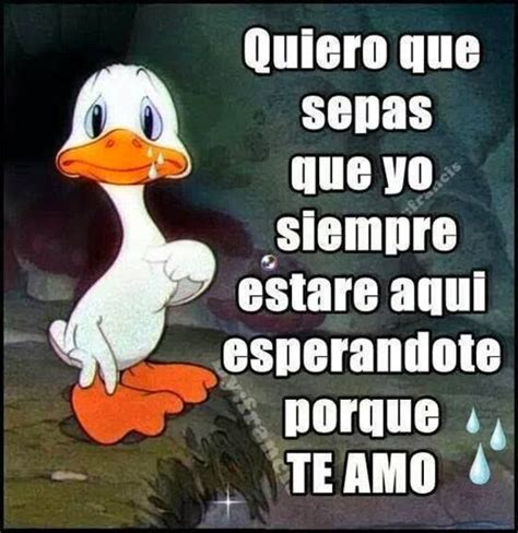 imagenes chidas para youtube 25 best ideas about imagenes chidas de amor on pinterest