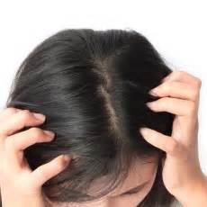 manchas rojas cuero cabelludo caspa costra l 225 ctea y otras condiciones cuero