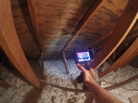 green attic insulation inc mold testing