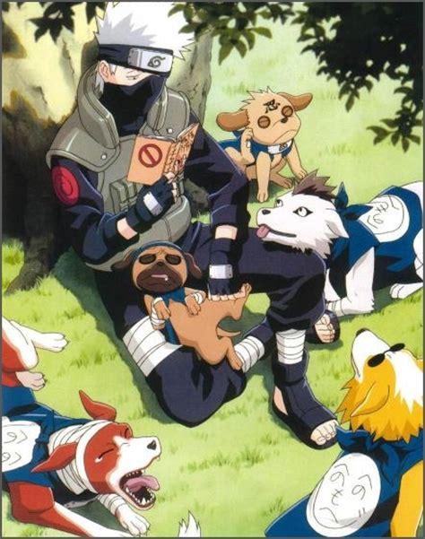 kakashi dogs do u like kakashis dogs poll results kakashi fanpop