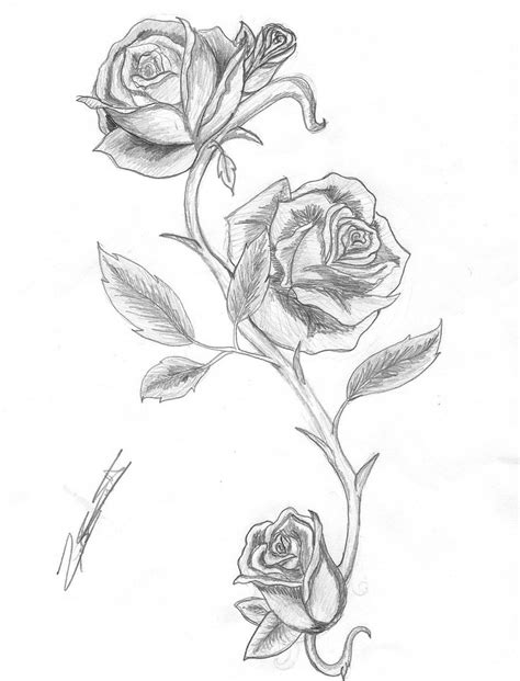 tattoo designs roses and thorns and thorns by isalwaysinspired on deviantart