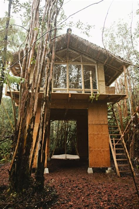 air bnb tiny house this tiny hawaiian treehouse is all your dreams come true