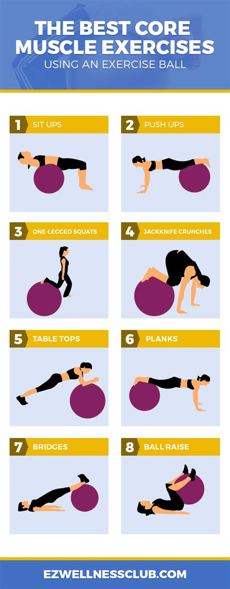 core muscle exercises   exercise ball