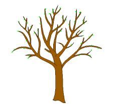 Brown Tree Clip by Printable Brown Tree Branch Template Clipart Best