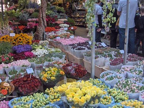 mercato dei fiori trionfale mercato dei fiori operatori in rivolta contro gli abusivi