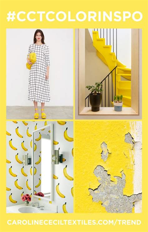 trend color 221 best images about s trends s s 2017 on