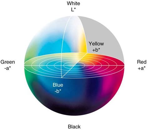 L Colored by L A B Color Space Exles For Students Colors And Globes