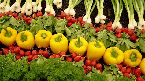 alimentazione a due anni alimentazione il biologico conquista gli italiani 44