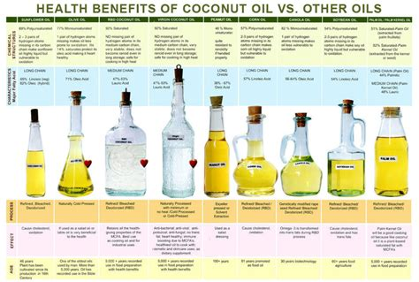 benefits of healthy fats and oils chantel dubois transitions the health benifits of